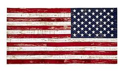 Timeless Treasures American Pride 23.5in American Flag Panel
